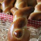Paashaas broodjes (witte bollen)